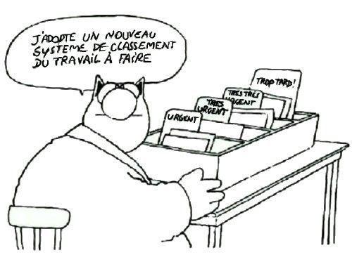 DE L'ORGANISATION........