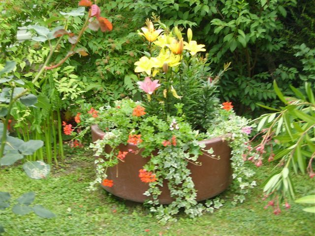 Un gros bouquet de fleurs pour vous for Gros bouquet de fleurs